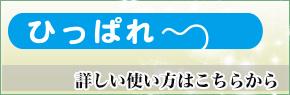 ひっぱれ~段ボール